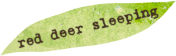 red-deer-sleeping.png