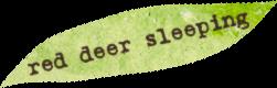 red-deer-sleeping.png