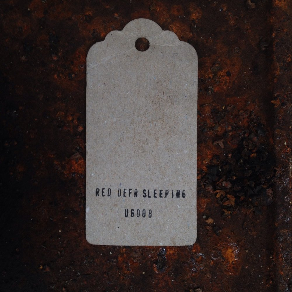 Red Deer Sleeping tag for Autumn ep Serial Number UG 008