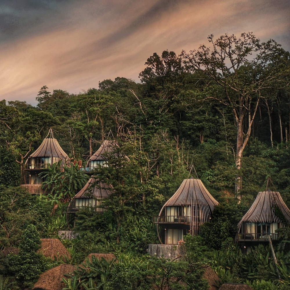 Tree Houses & Bungalows -