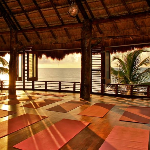 wellness & retreats -