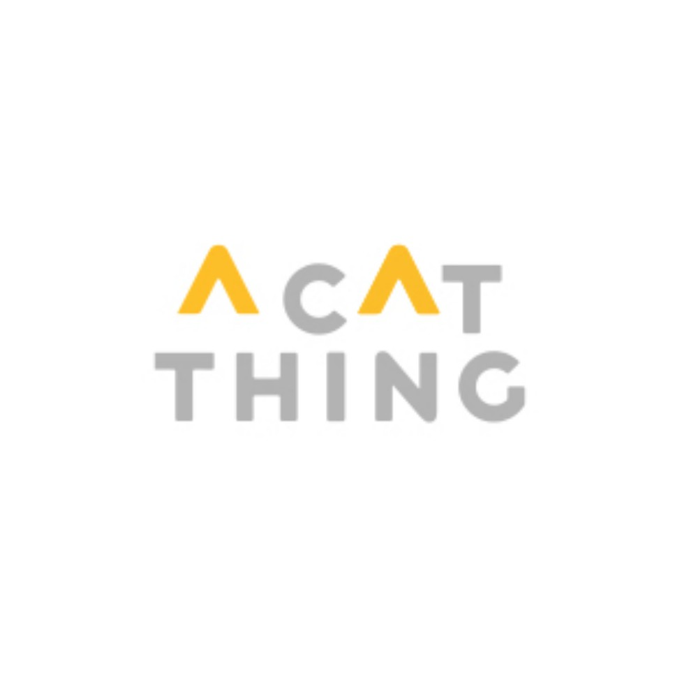 A Cat Thing