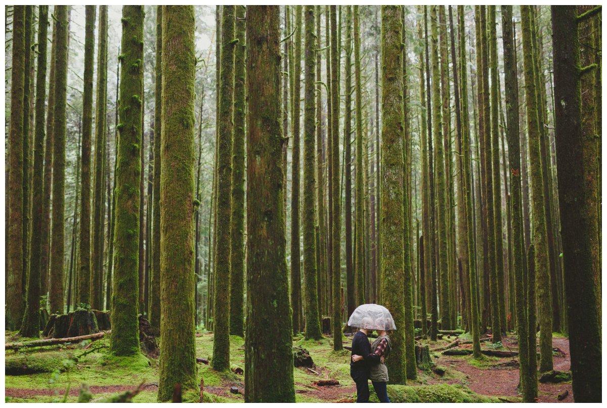 spirea natura trail