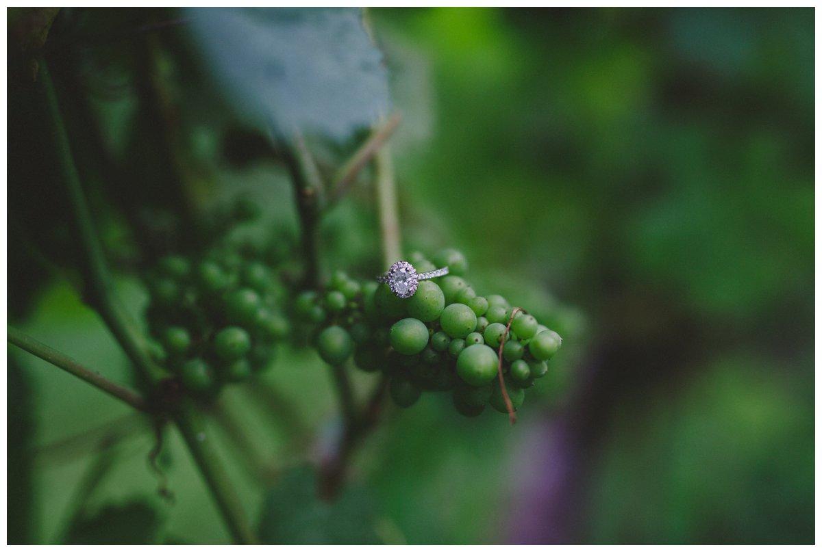 langley-engagement-photographer_0038