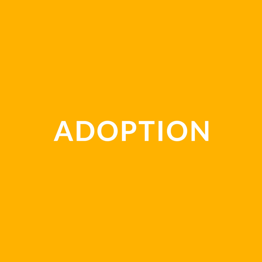 Adoption-tile.jpg