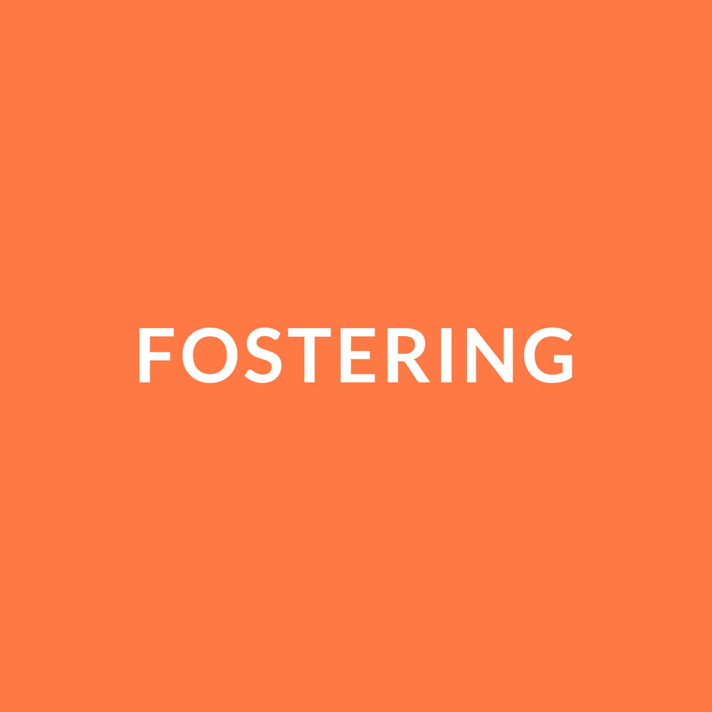 fostering.jpg