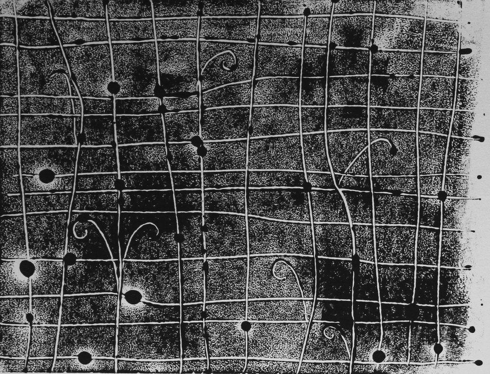Image: Young Ferns on Grid, ink monotype on paper, 2017 / Izgara Üzerinde Eğreltiotları, kağıt üzerine mürekkep monotip, 2017
