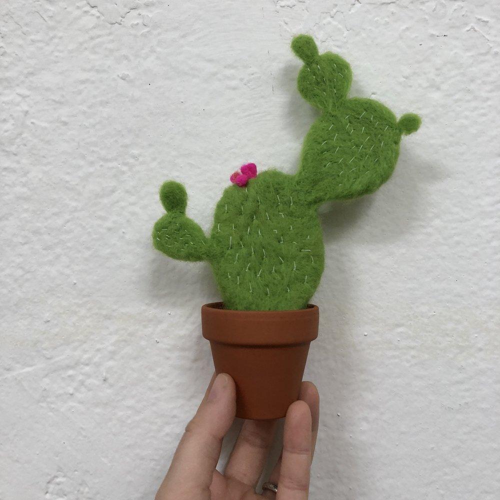 felted succulent.JPG