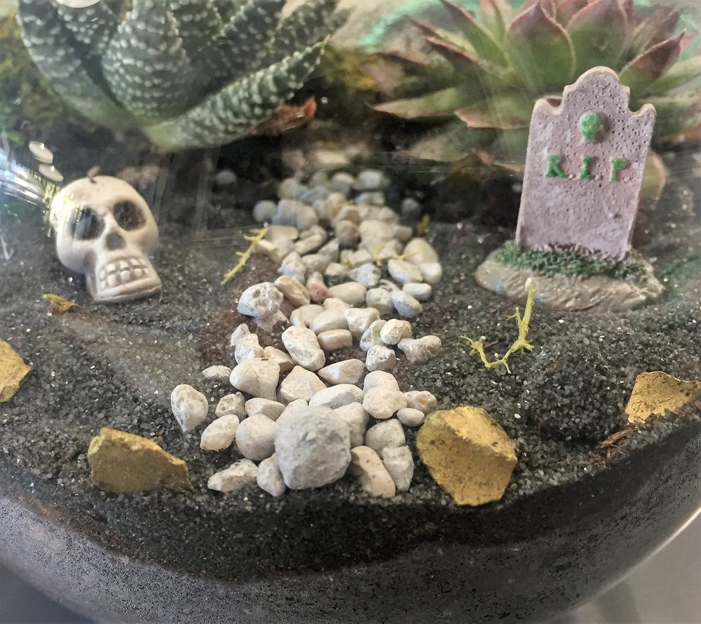spooky terrarium.JPG