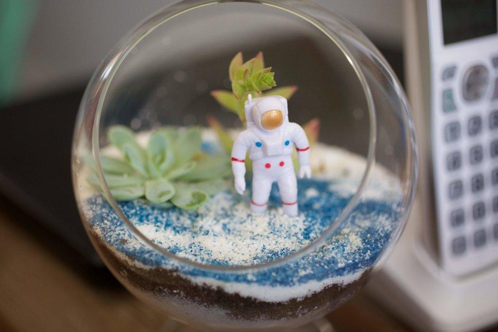 astronaut terrarium.jpg