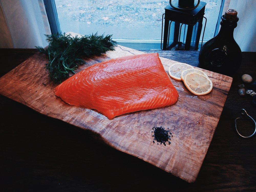 Coho Salmon 2.jpg