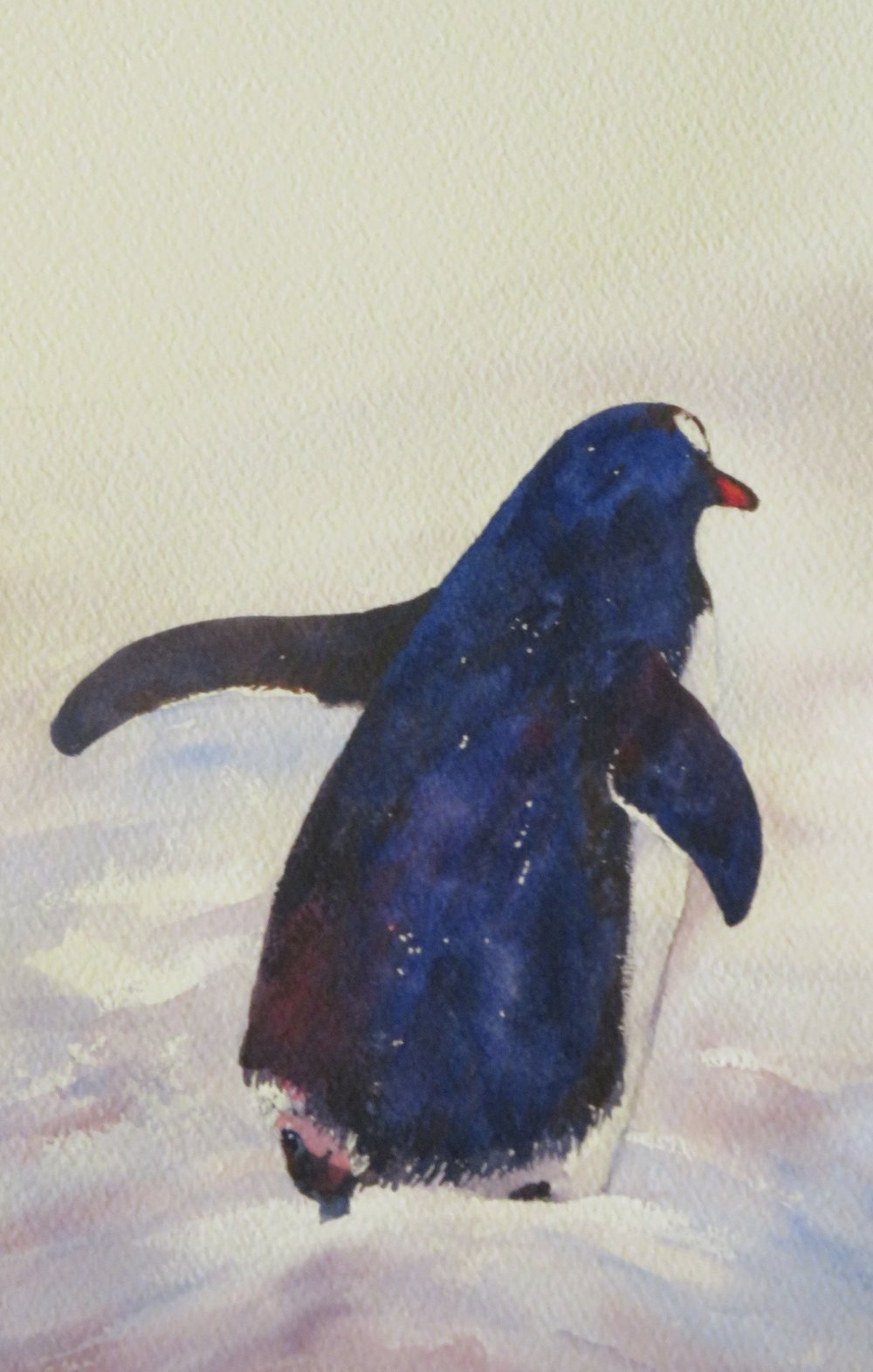 Penguin 1 -  SOLD