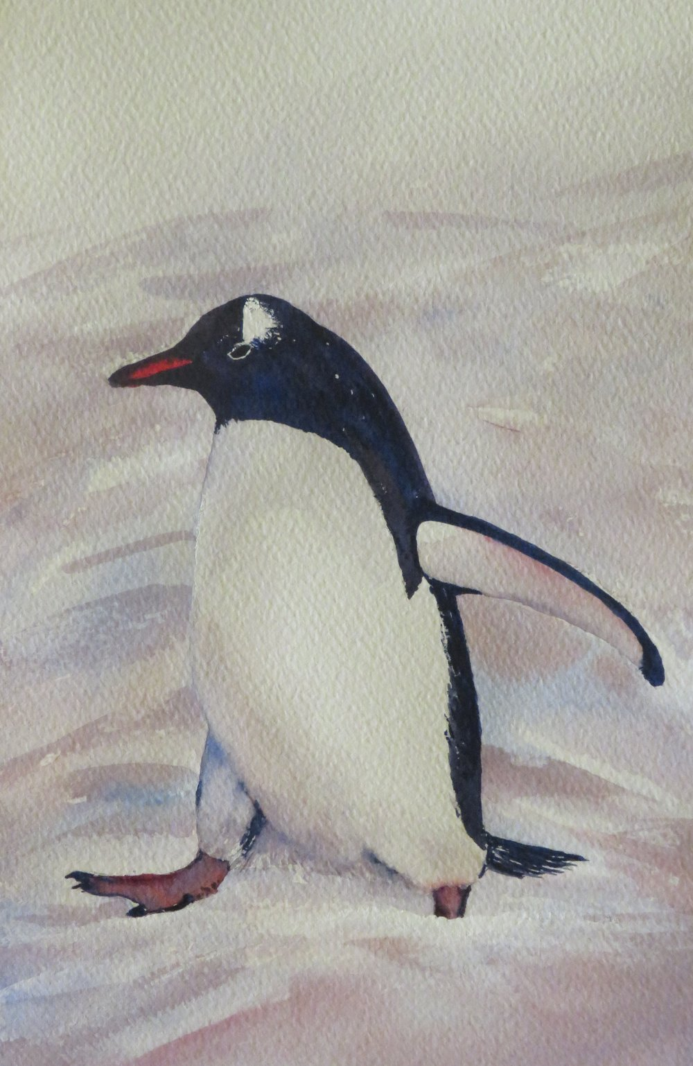 Penguin 3 -  SOLD