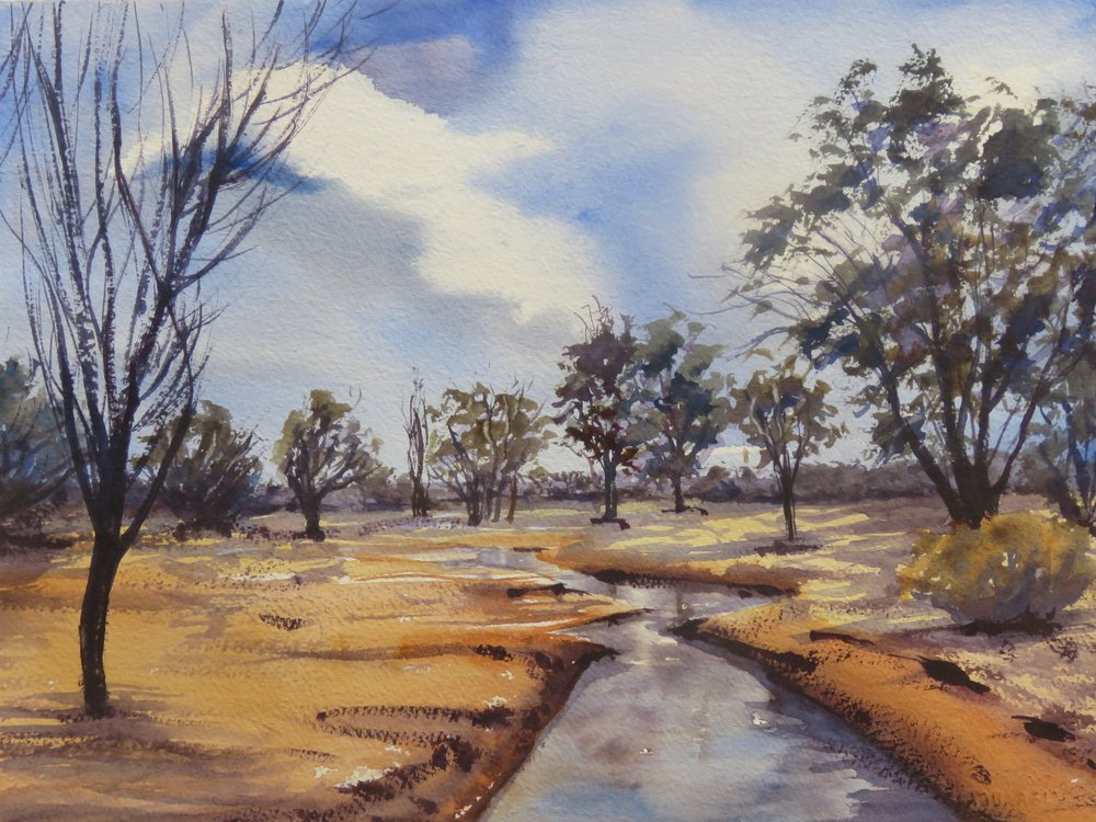 Country Scene    36cm x 26cm    Original Watercolour     Unframed      $150