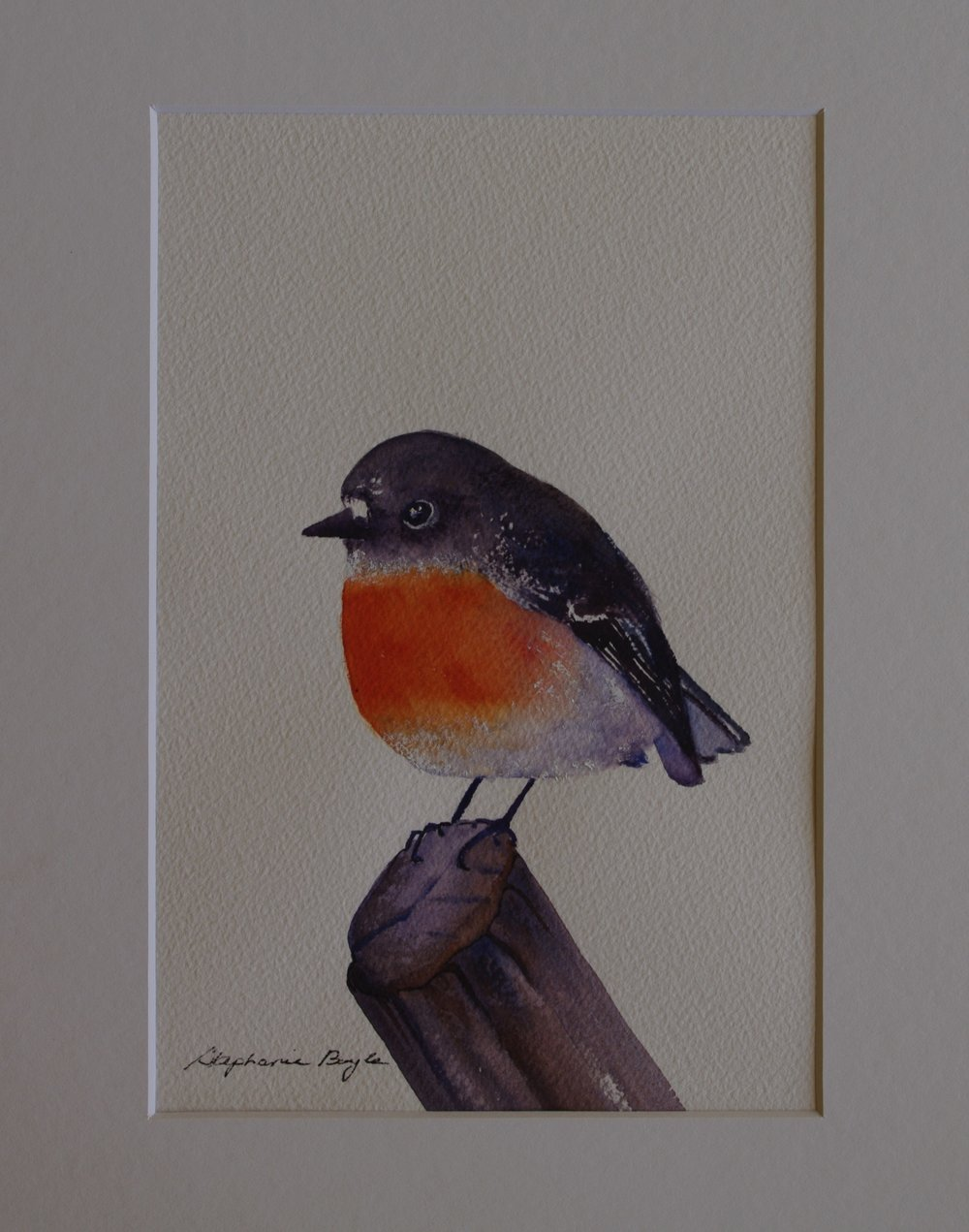 Red Robin    17cm x 22cm    Original Watercolour     Unframed      $100