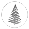 piage_lorraine_photography_icon_fern.png