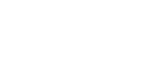 OneFundOneVision.png