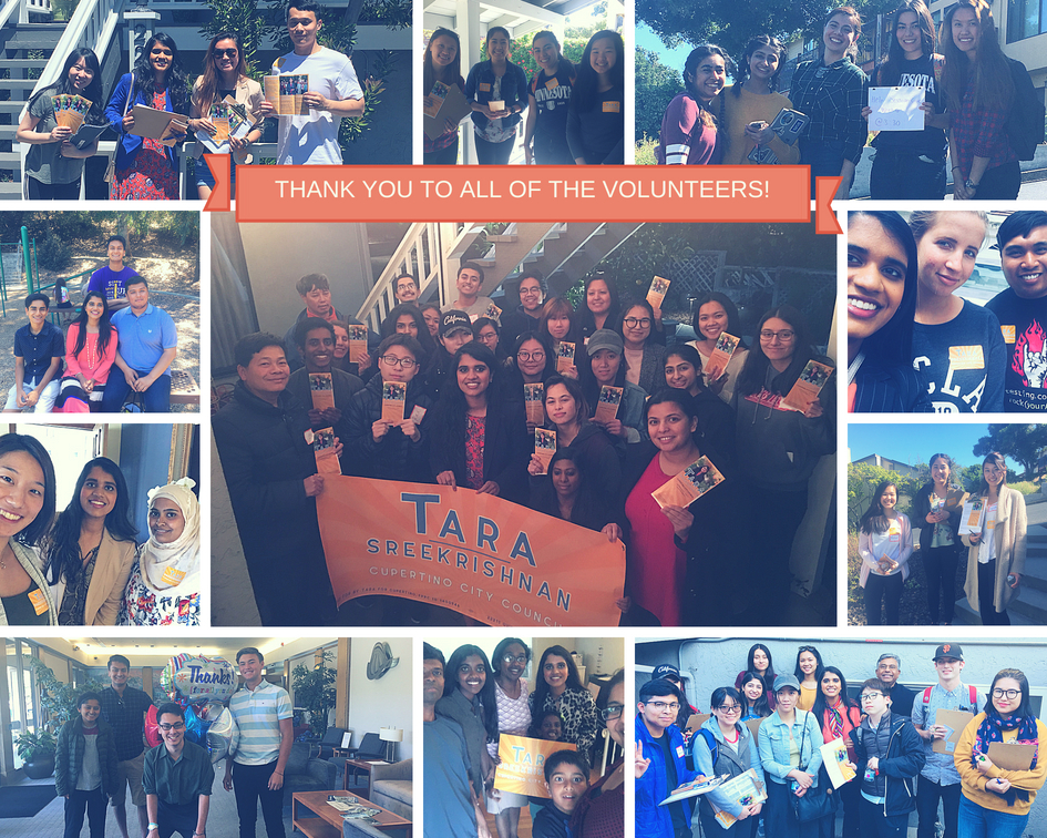 Tara Volunteer Collage.jpg