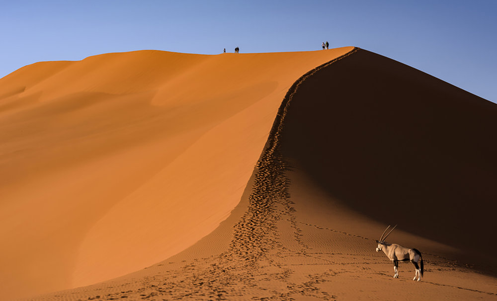 Big Daddy Dune