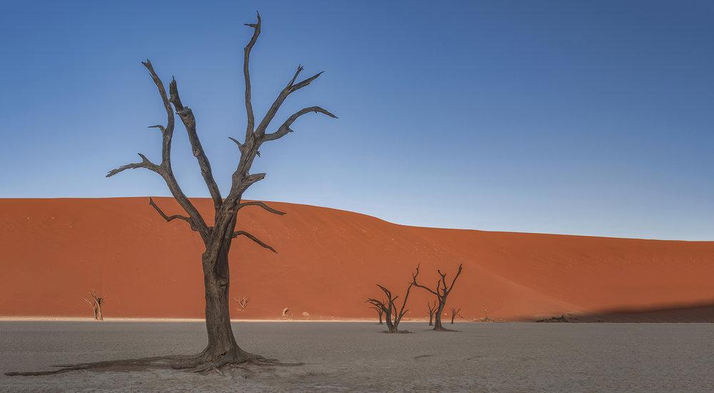 Namibia-Africa-Deadvlei-Sossusvlei-Landscape