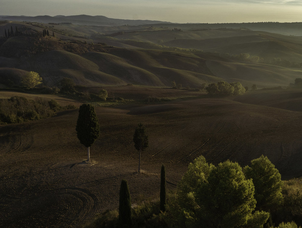 An intimate shot of the Tuscan landscape, sounds like a paint with Autumn colors