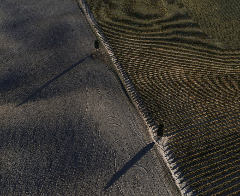 A top down view from the patterns of the Tuscan fields