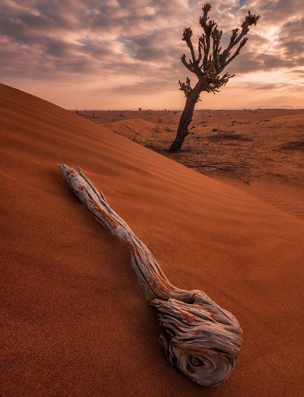 The desert of Sharjah