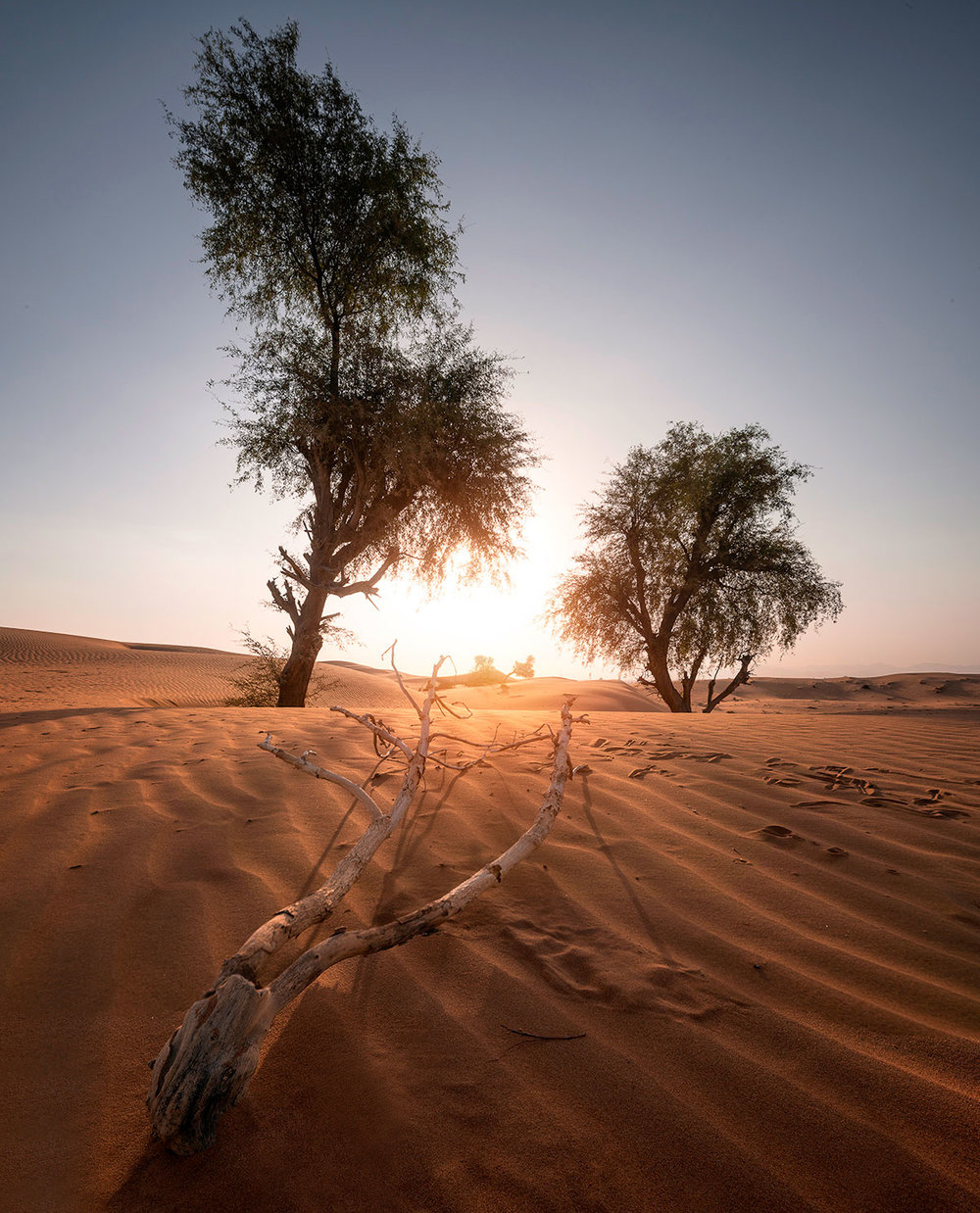 Maliha desert during sunrise