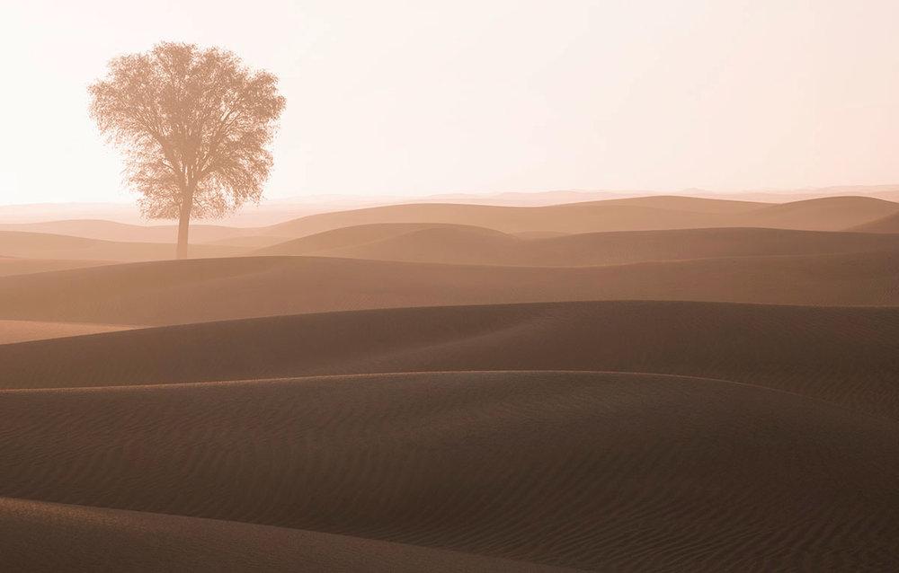 Glow sunrise at Dubai desert