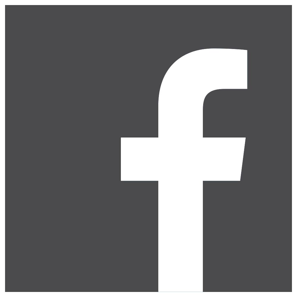 Logo FB Gris 2.png