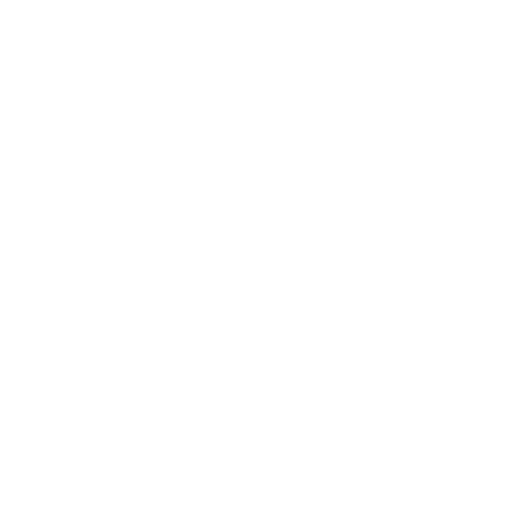 The Future Lab.png