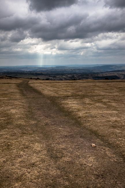 Taken in Dartmoor, Devon