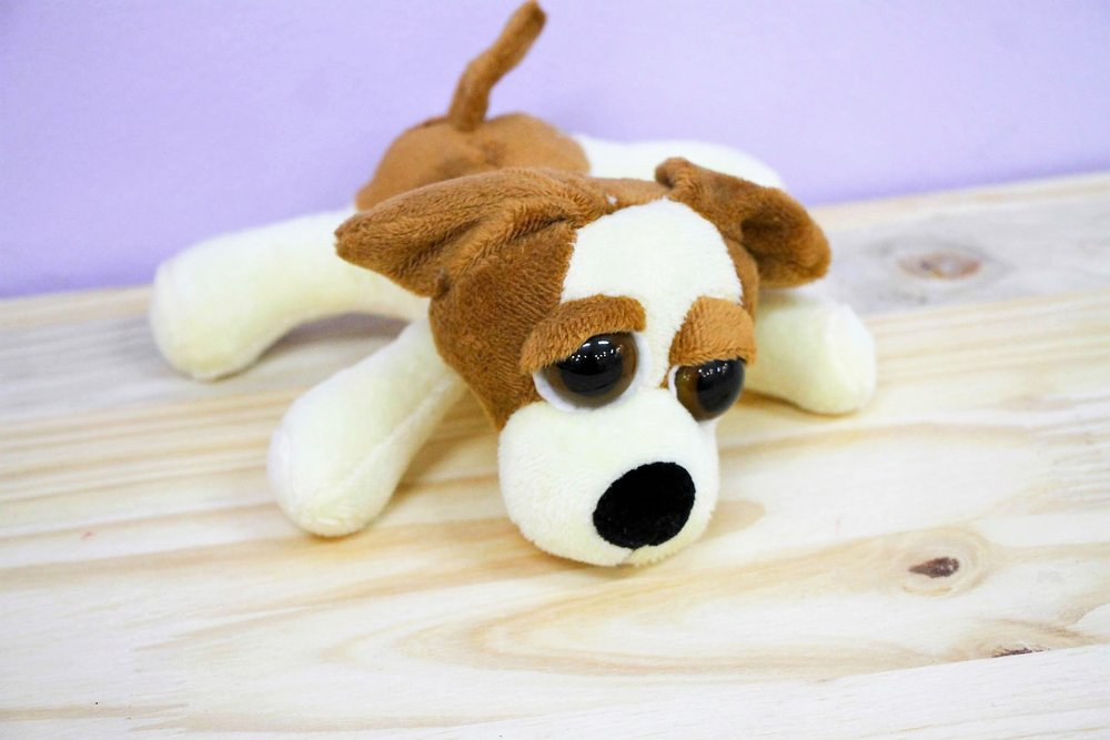Puppy Plush Toy - R 65 - Part of our big-eyed cuddly collection.