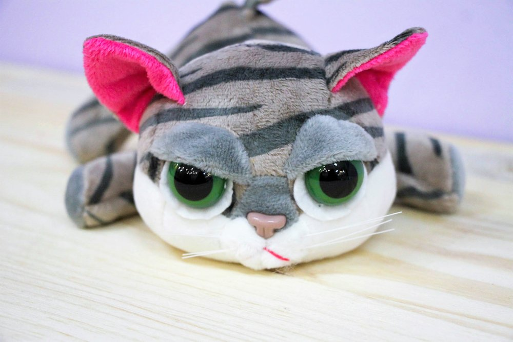 Kitty Plush Toy - R 65 - Part of our big-eyed cuddly collection.