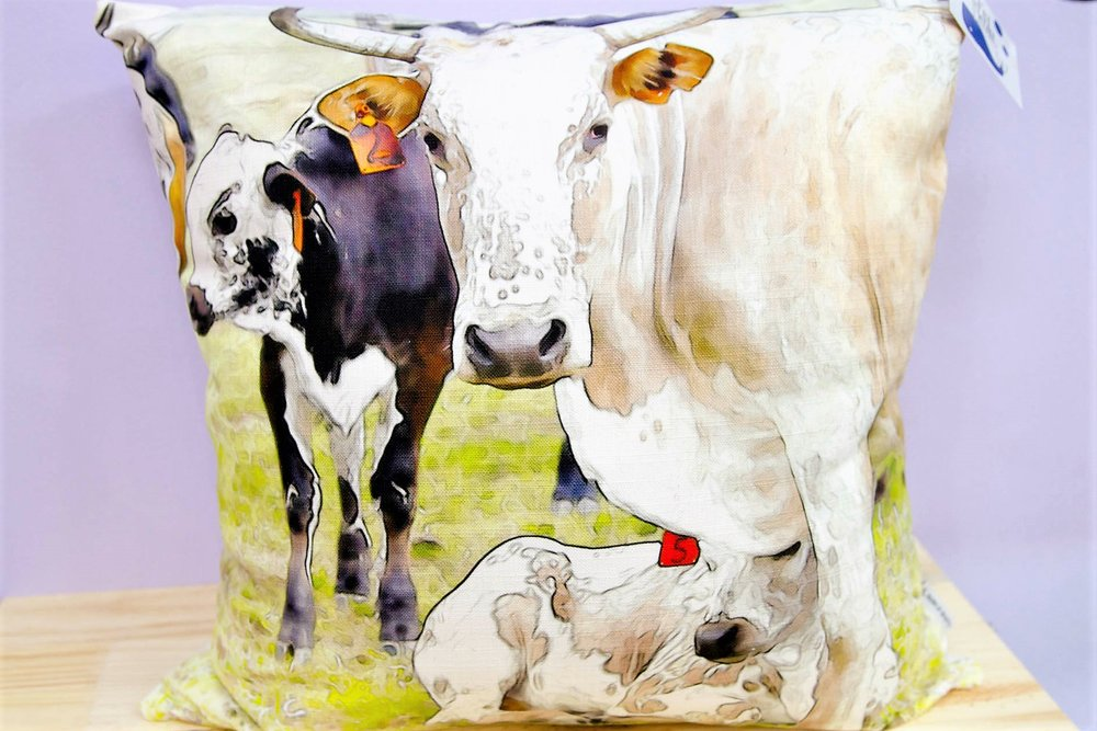 Nguni Herd Cushion Cover - R 365 - Square - Inner Sold Separately.