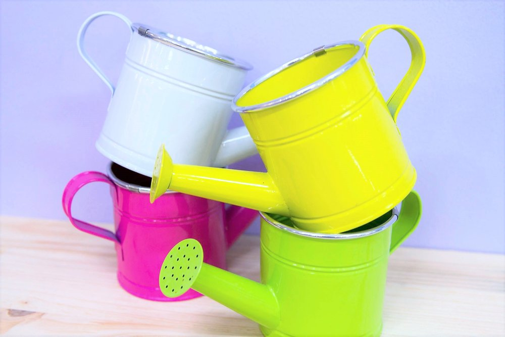 Watering Can Plant Holders - R 195 each - 4 colors available as pictured. Sold Out in Green.