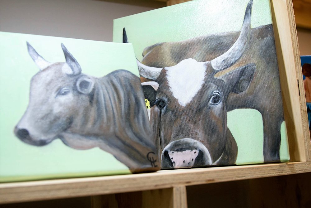 Nguni Oil Paintings - Please inquire for individual prices. From R 250 upwards. - Once-off originals done by a local artist.