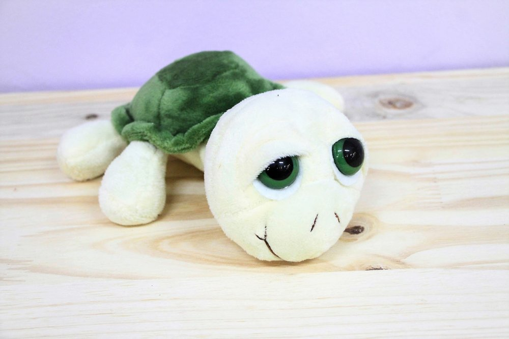 Turtle Plush Toy - R 65 - Part of our big-eyed cuddly collection.