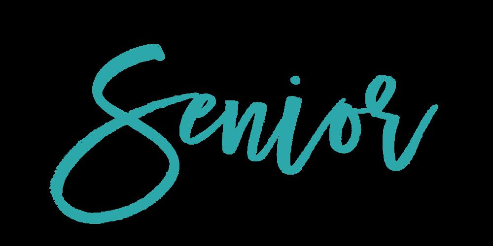 Vanity_senior.png