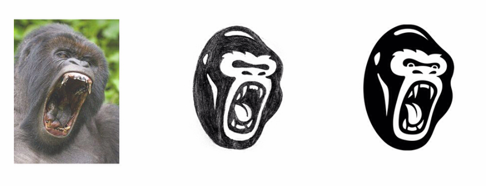 development of primate.PNG
