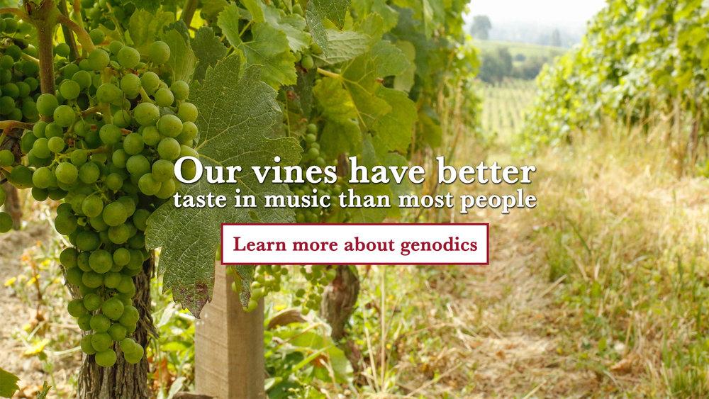 vinesGenodics.jpg