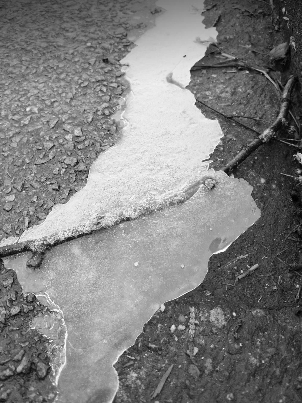20190126 bevroren levensweg.jpg