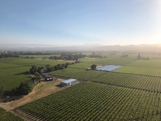 Nothing but beautiful views in the Valley! . . . . #wine #napavalley #thevalley #redwine #winery #travel #cali #california #grape #vine #napavalleywine #napavalleylife #napavalleywines #napavalleywinery #winerylovers #corporatetravel #corporatetravelagency #corporatetrip #corporatetravelservice #wine🍷 #stressfree #napawinery