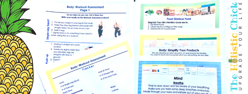 """The Program - Worksheets, Checklists, shopping lists, workouts, details, Bonus """"State of health:why"""" and more!"""