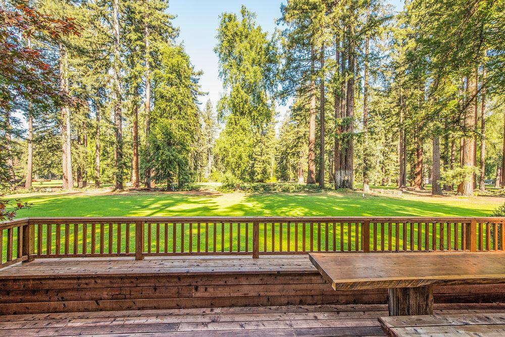 Redwood Drive023.jpg