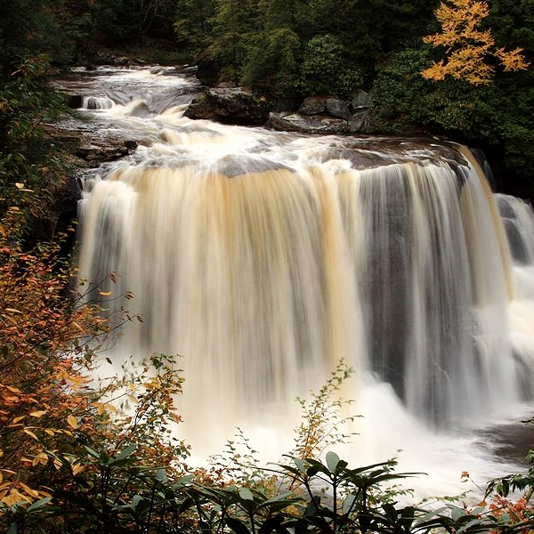 Blackwater_Falls_State_Park_West_Virginia.jpg
