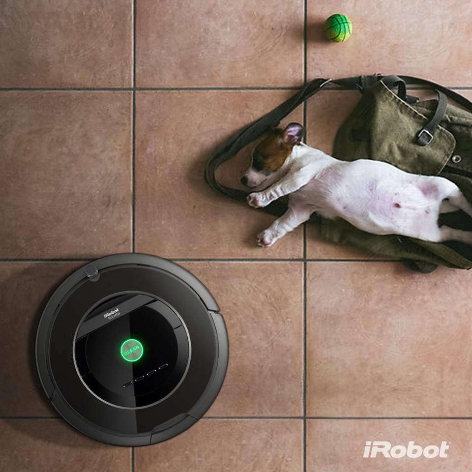 dog_iRobot_.jpg