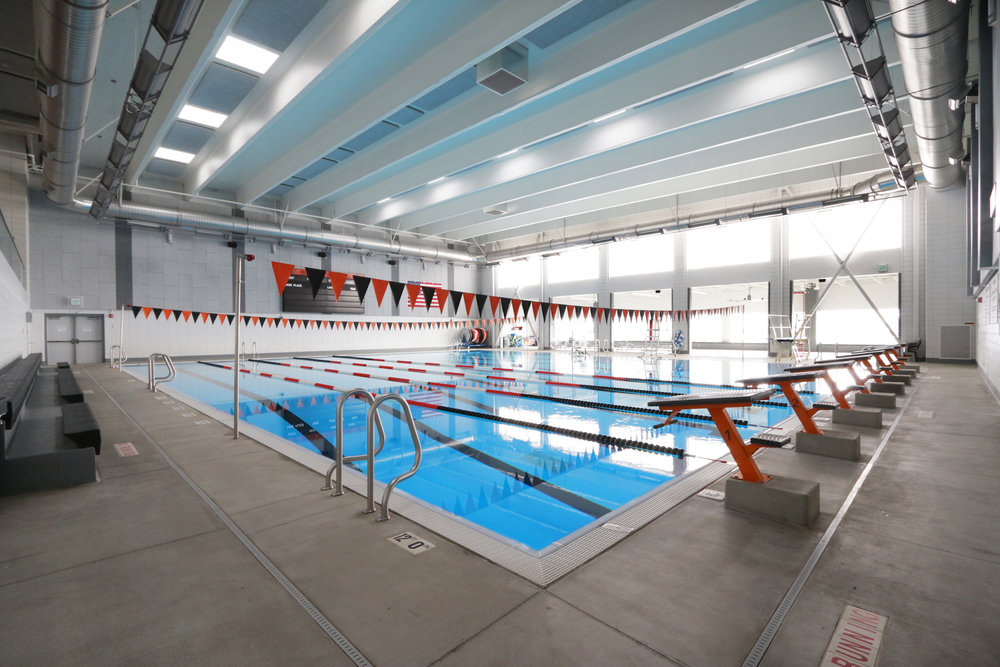 Pool from NW Corner.jpg