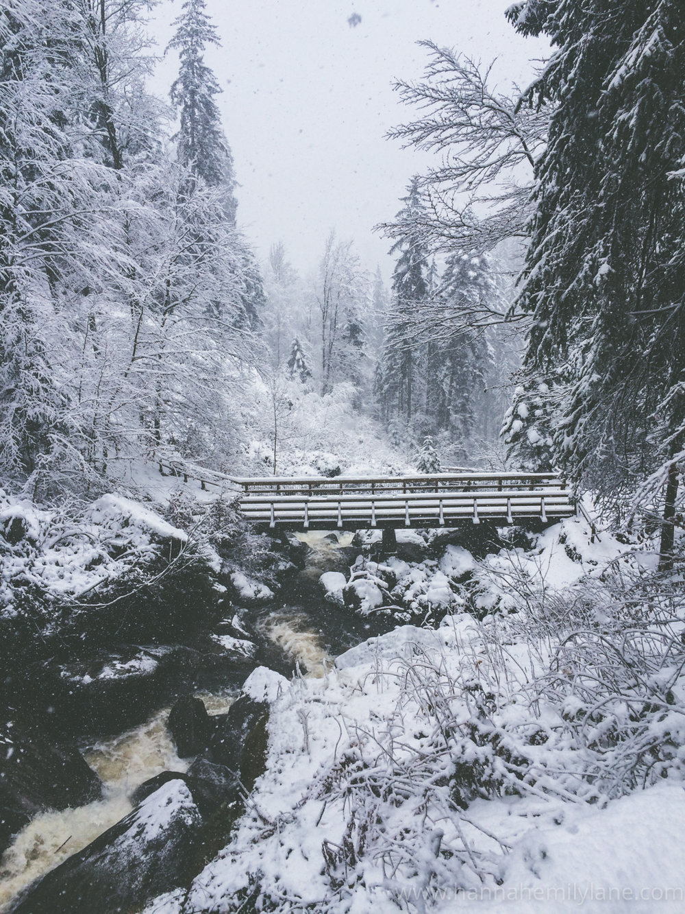 The Black Forest | www.hannahemilylane.com-9.jpg