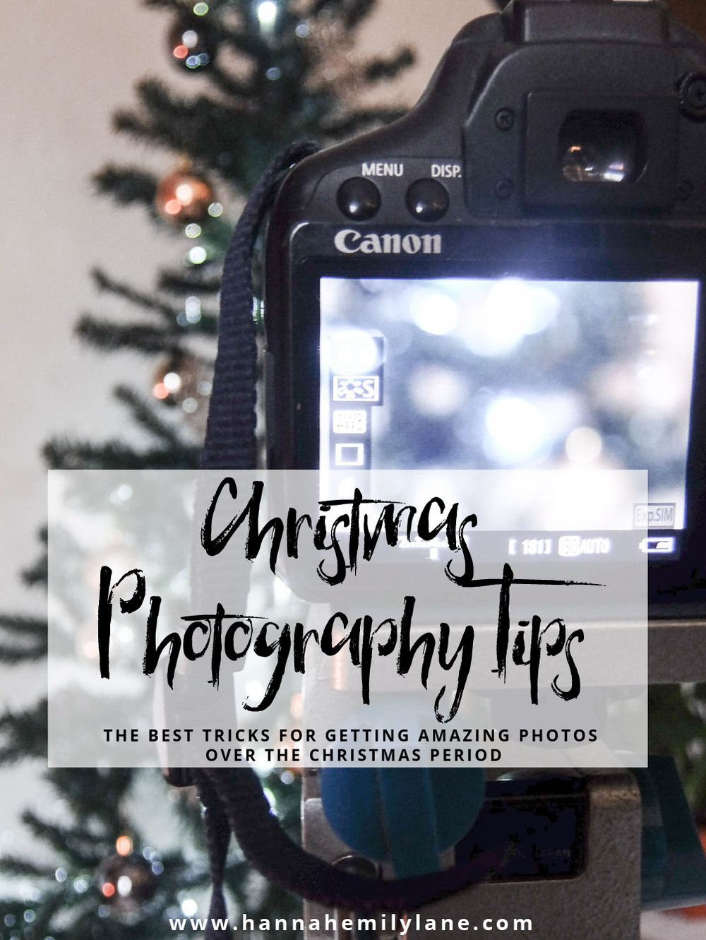 Christmas Photography Tips | www.hannahemilylane.com